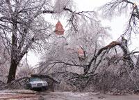 Ice-Storm-Damage
