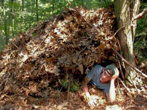 Natural-Shelter-fix