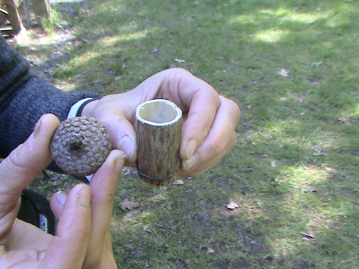 how to make a spinning top out of wood