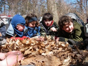 group of kids in leaves