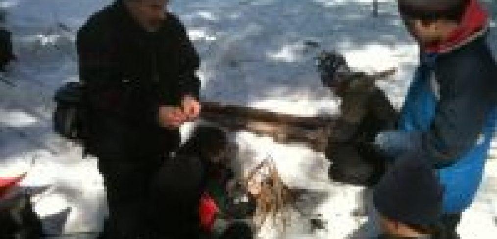 winter fire wilderness skills earthwork programs