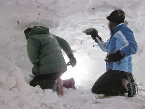 winter shelter building wilderness skills