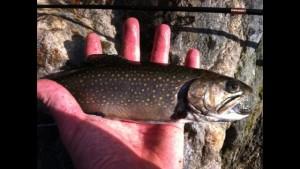 primitive fishing wilderness skills weekend of workshops Earthwork Programs