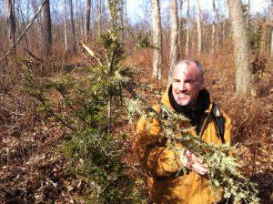 tracking moose wilderness skills western ma