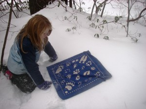 Maya Tracking winter