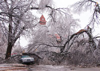 Ice-Storm-Damage